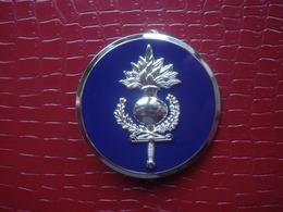 Insigne De Beret . FGE - Forces De La Gendarmerie Européenne - Police & Gendarmerie
