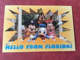 USA. Greetings From Florida. Disney 1998 - Disneyworld