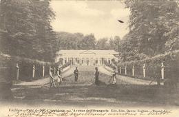 BELGIQUE ENGHIEN - PARC DU DUC D'ARENBERG- L'AVENUE DE L'ORANGERIE - Enghien - Edingen