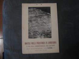 MANIFESTO   MOSTRA DELLA PREISTORIA IN LOMBARDIA  MILANO 1962     34 X 24 - Manifesti