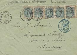 1885- Cover Ftom ODENSE Fr.  4 Ore X 5  To  France - 1864-04 (Christian IX)