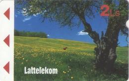 TARJETA TELEFONICA DE LETONIA, (007) - Letonia