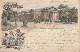 Budapest , Mücsarnok ,Palais Des Beaux-Arts ,carte Litho De 1900 Pour St-Petersburg ,2 Scans - Hungary