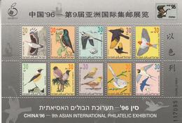 1996  Israel Birds China 1996 Miniature Sheet Of 10 MNH - Altri