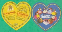 Autriche - Jung Salzburg - Dépliant Publicitaire - Publicités