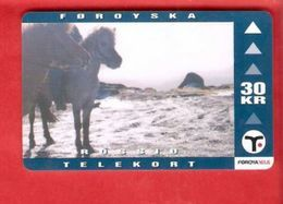 FAROE ISLAND Magnetic Phonecard - Faroe Islands