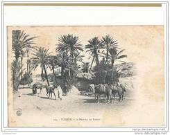 TUNISIE TOZEUR LE HAMMA DE TOZEUR - Túnez