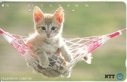 JAPAN - Cat(331-227), 11/92, Used - Japan