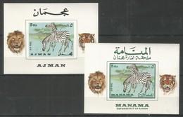 AJMAN - MANAMA - MNH - Animals - Zebra - Imperf. - Stamps