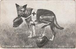 """CPA CHIEN Croix Rouge Urinant Sur Un Casque à Pointe / 1915 / """"Le Chien Sanitaire Et Patriote"""" - 1914-18"""