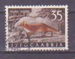 66-668 / YUGO - 1960  YUGOSLAVIAN  FAUNA - ANIMALS  Mi 921 O - 1945-1992 Socialist Federal Republic Of Yugoslavia