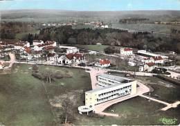 88 - DARNEY : La Pouponnière ( Immeubles , Lotissement ) CPSM Dentelée Colorisée Grand Format - Vosges - Darney