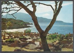 Algeria, Tipaza, Roman Ruins, '70s. - Algeria