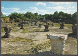 Algeria, Tipaza, Ruines Romaines, '70s. - Algeria
