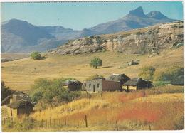 Oranje Free State - Rural Tranquility / Oranje Vrystraat - Landlike Rustigheid - South-Africa - Zuid-Afrika