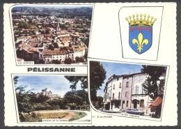 CPSM - Pélissanne - Multivues - Place Cabardel Château Berben Vue Générale - Voir 2 Scans - Pelissanne