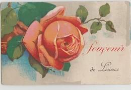 CPA 14 LISIEUX Souvenir Fantaisie Carte Colorisée à Système Rose Et Ses 10 Petites Vues - Lisieux