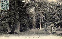 28 Forêt De DREUX - Route Des Princes - Dreux