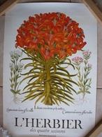 Affiche - L'Herbier - Manifesti