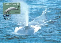 1983 - PALAU (Belau Ou Pelew) - Blue Whale - Baleine Bleue - Palau