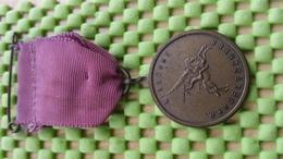 Medaille / Medal - Medaille Politie Sport Ver. Renkum Airborne Wandeltocht 11 - Police