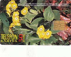 Hungary -Flowers Superb Fine Used Phonecard - Hungary