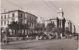 TOULON EN 1959,la Grande Rue,vue Sur La Sous Prefecture,rails De Tram,cycliste,2cv Citroen,83 - Toulon