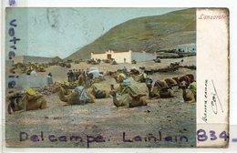 - Isla De Lanzarote, Canaria, Ie CANARIAS - Chameaux, Dromadaires, Précurseur, écrite, 1907, Scans. - Espagne