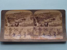 Garden Of Gethsemane Mount Of Olives PALESTINE ( N° 17 ) Stereo Photo : Underwood & Underwood Publi ( Voir Photo ) ! - Stereoscopic