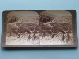 The Lower Road To Bethany Jerusalem Palestine ( N° 33 ) Stereo Photo : Underwood & Underwood Publi ( Voir Photo ) ! - Photos Stéréoscopiques
