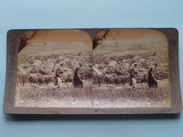 Bethany , Where Our Lord Was Anointed Palestine ( N° 36 ) Stereo Photo : Underwood & Underwood Publi ( Voir Photo ) ! - Photos Stéréoscopiques