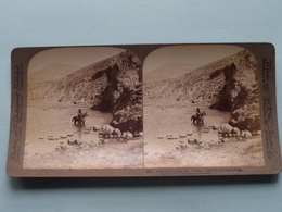 Gideon's Spring, Gilboa, Palestine ( N° 66 ) Stereo Photo : Underwood & Underwood Publi ( Voir Photo ) ! - Stereoscopic