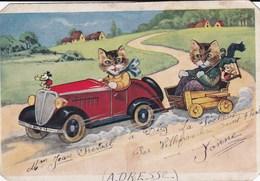 5 Cartes Postales (ou Pas) ,ou Il Y à Des Chatsou Il Y à Des Chats - Cats