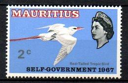 MAURICE. N°292 De 1967. Hirondelle De Mer. - Swallows