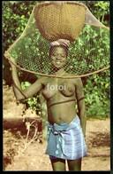 OLD POSTCARD GUINE BISSAU  FULA Femme Noir  Seins Nue Nu - Black Nude Breasts Woman AFRICA - Guinea-Bissau