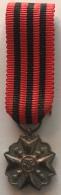 Médaille Civique. Croix Pour Ancienneté De Service. Médaille Miniature Avec Son écrin - Professionnels / De Société
