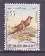 66-711 / TUNESIA - 1965  BIRD  Mi 639 O - Tunisia