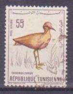 66-712 / TUNESIA - 1966  BIRD  Mi 655 O - Tunisia