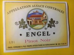 8010 -  Pinot Noir D'Alsace Engel - Other