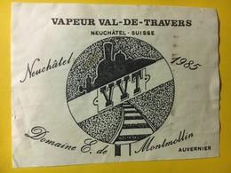 8020 -  Vapeur Val-de-Travers VVT 1985 Doamine De Montmollin Suisse - Trains