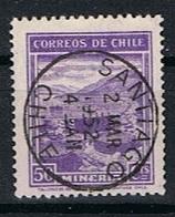 Chili Y/T 173 (0) - Chili