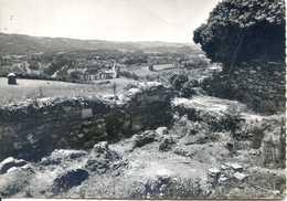 (81)  ROQUECOURBE (Tarn)  Fouilles De Sainte Juliane - Roquecourbe