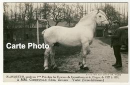 76 - Vainqueur 1er Prix Concours....de 1927 à 1931 - Eleveurs Coddeville Frères à Yvetot - Elevage