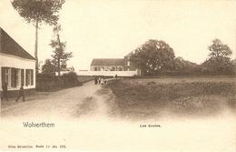 Wolverthem / Wolvertem : Les écoles - Meise