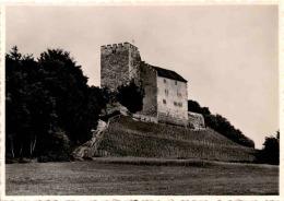 Habsburg (4) - AG Aargau