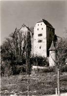 Schloss Wildegg AG - Bergfried Und Palas (38) - AG Aargau