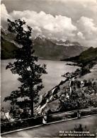 Blick  Von Der Kerenzerbergstrasse Auf Den Walensee Und Alvierkette (03046) * 21. 7. 1958 - GL Glarus