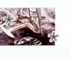 PHOTO (RETIRAGE) HISTOIRE CONTEMPORAINE DE LA VOILE LA ROUTE DU RHUM 1978 ... ... - Reproductions