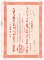 Action Ancienne -Cie Des Mines D' Ouasta Et De Mesloula - Titre De 1950? - - Afrique