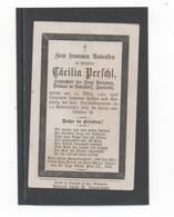 STERBEBILD  CÄCILIA PERSCHL, ZIEHTOCHTER IN UTTENDORF, INNKREIS  1901 - Santini